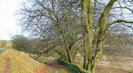 Walk Derbyshire – Around Matlock Moor