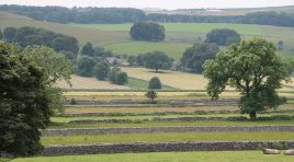 Walk Derbyshire – Chelmorton  and Deepdale