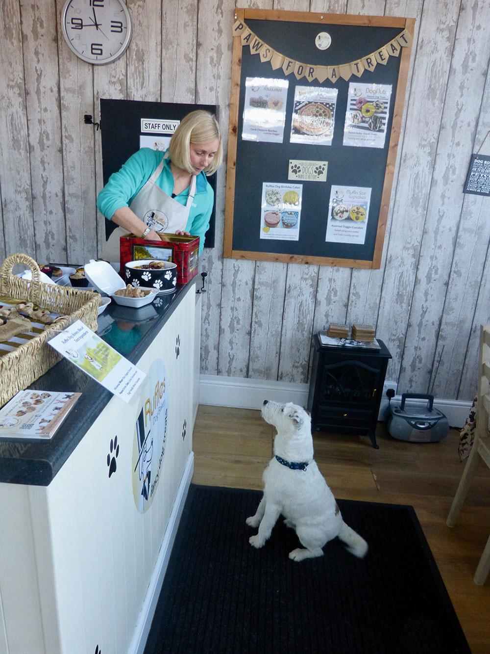 Taste Derbyshire – Canine Delights